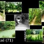 taize71